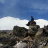 kazbek-elbrus-north-15